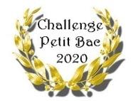 Petit bac 2020